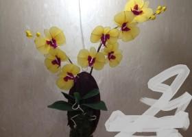 Cách làm hoa lan hồ điệp bằng vải voan