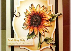 Làm thiệp hoa hướng dương ngày 20-11