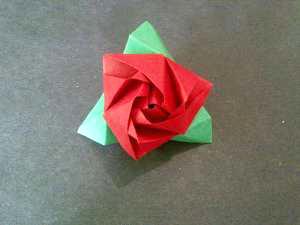 cách xếp hoa hồng ma thuật