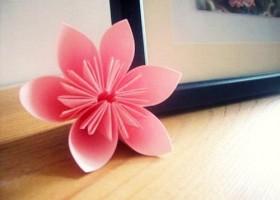 Cách làm hoa anh đào bằng giấy