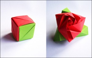 hoa hong ma thuat origami